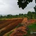 ૧૯ એકર ખેતીની જમીન બિલકુલ વ્યાજબી કિંમતે વેચવાની છે - વડોદરાથી ૭૫ કિલોમીટર્સ દૂર.