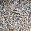 Chaval(Rice)tukadi