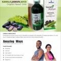 KARELA JAMUN JUICE - Original Flavour Drink