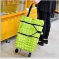 2 in 1 trolley bag